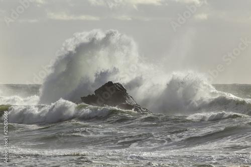 Foto auf Gartenposter Wasser Stormy wave splash