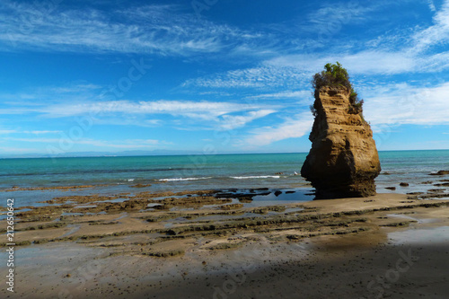 Cadres-photo bureau Taupe Geologically important spot Cape Kidnappers, New Zealand