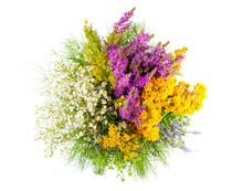 Bouquet Of Wildflowers Isolate...
