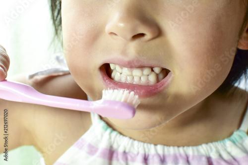 фотография  歯磨き