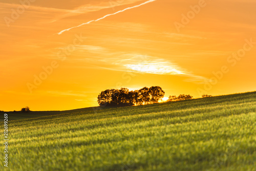 Poster Miel Beautiful sunset