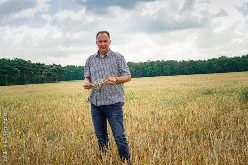 Fényképezés  Trockenheit - Dürre, ratloser Landwirt im verdorten  Getreidefeld