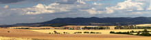 Panorama View Of Typical European Rural Scene, Wheat Field Before Harvest In Countryside. Hostynske Vrchy, South Moravia, Czech Republic
