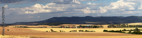Canvastavla Panorama view of typical European rural scene, wheat field before harvest in countryside