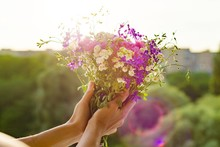 Woman Holding Bouquet Of Summe...