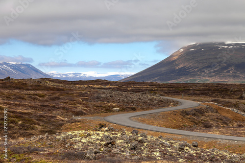 Foto op Canvas Bleke violet Asphalt road on the beautiful landscape in the east of Iceland.