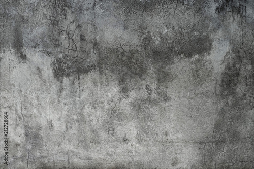 Poster de jardin Beton Simple gray concrete wall texture background.