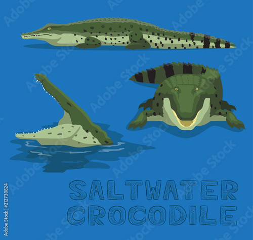 Fototapeta premium Saltwater Crocodile Cartoon Vector Illustration