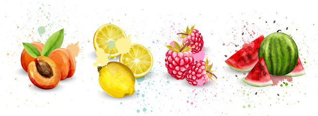 Watercolor fruits set Vector. Apricot, lemon, raspberry, watermelon delicious illustrations