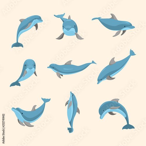 Photo Cartoon Characters Funny Dolphin Set. Vector