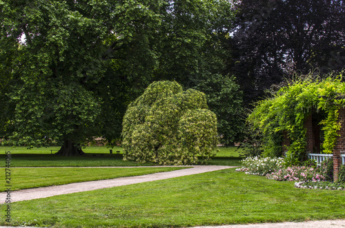 Spoed Fotobehang Begraafplaats ogród park