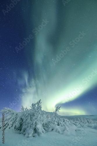 Photo  Aurora Borealis in beautiful nature