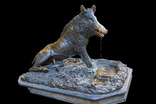 Statue Of Bronze Boar ( Il Por...