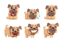 Flat Vector Set Of Pug With Di...