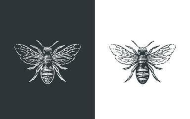Logo medonosne pčele. Ilustracije ručno nacrtanog graviranja.