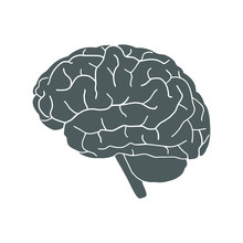 Icon Human Organ Brain. Sign Human Brain. Isolated Gray Symbol Brain On White Background. Stock Vector Illustration