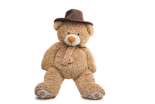 Soft Toy Bear Isolated