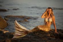 Beautiful Mermaid Sitting On A...