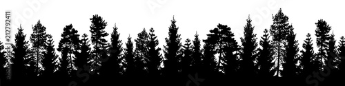 Foto op Aluminium Zwart Seamless forest vector landscape with coniferous trees in black and white.