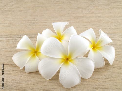 Poster Frangipani closeup group of blooming pure white plumeria or frangipani flower head on brown wood plank table floor, pile of beautiful tropical flowers are fragrant and bloom in summer for zen spa decoration
