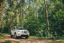 White Suv In Forest. Car Trave...