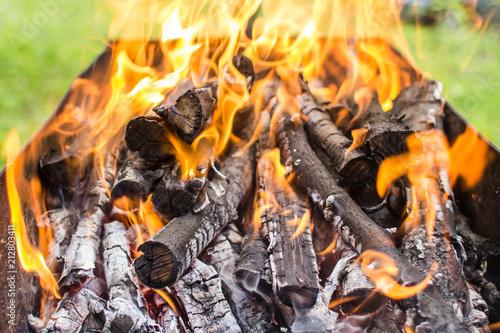 Fotografiet  Burning firewood