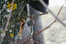 Rusty Keys On The Tree. Slovakia