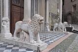 Lion sculpture Basilica of Santa Maria Maggiore, Bergamo Alta italy