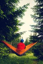 Adventurer Relaxes In Hammock ...