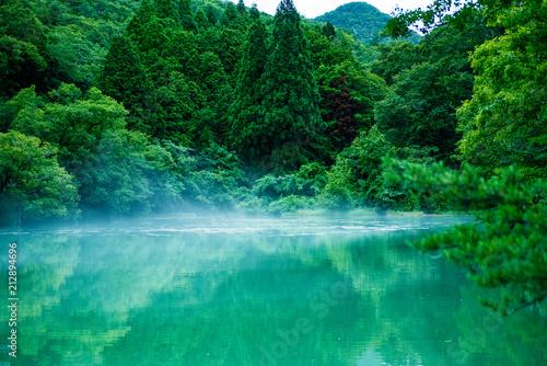 Fotografie, Obraz  静寂の朝・深山の沼に霞