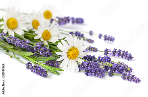 Chamomiles and lavender flowers bunch on white background