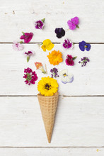 Ice Cream Cone And Edible Flowers On White Wood