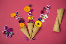 Ice Cream Cones And Edible Flowers On Red Background