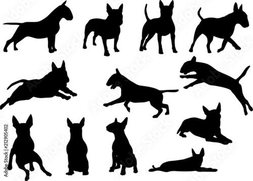 Leinwand Poster Bull Terrier - Silhouetten