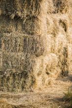 Full Frame Shot Of Hay
