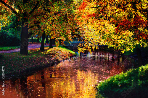Staande foto Herfst Autumn landscape. Golden autumn scene in a park with falling leaves. Colorful foliage.