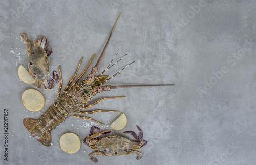 Food frame with crustacean Wallpaper Mural