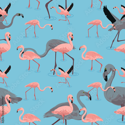 Canvas Prints Flamingo Bird flying flamingo pattern seamless with shadow