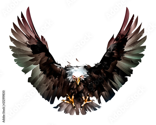 painted flight bird bald eagle in front Wall mural