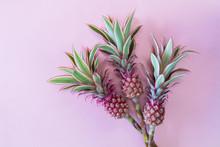 Pineappless Flowers On Pinlk P...
