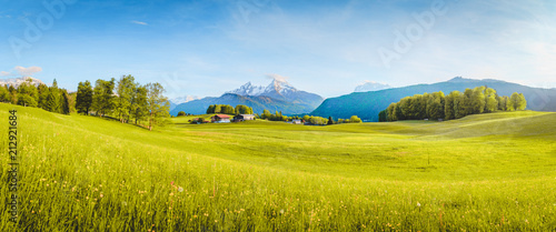 Idyllic landscape in the Alps with blooming meadows in springtime - 212921684