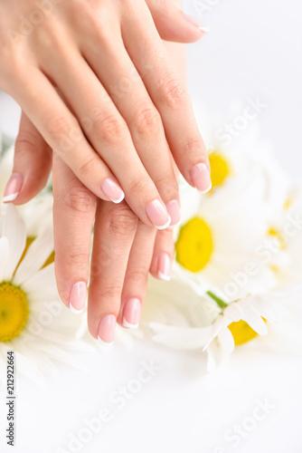 Foto op Plexiglas Beautiful woman french manicured hands with fresh daisy flowers
