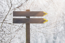 Wooden Direction Sign In Winter Forest.