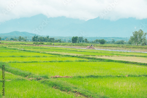 Fotobehang Rijstvelden Rice field , Farmer and Tractor with Mountain background in thailand
