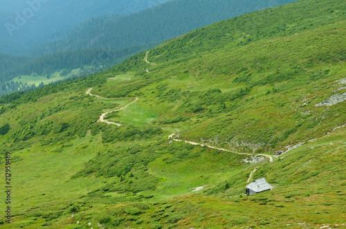 Fototapeta Path to the lonely house obraz na płótnie