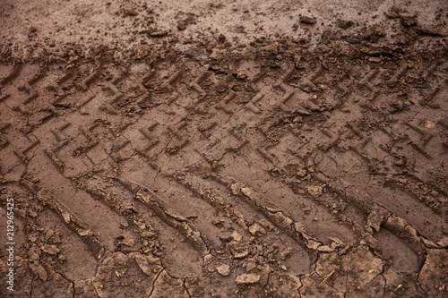 Foto  Imprint of the wheel protector in a swamp on a dirt road after a rain