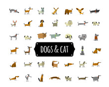 Cute Dogs Collection For Your Design