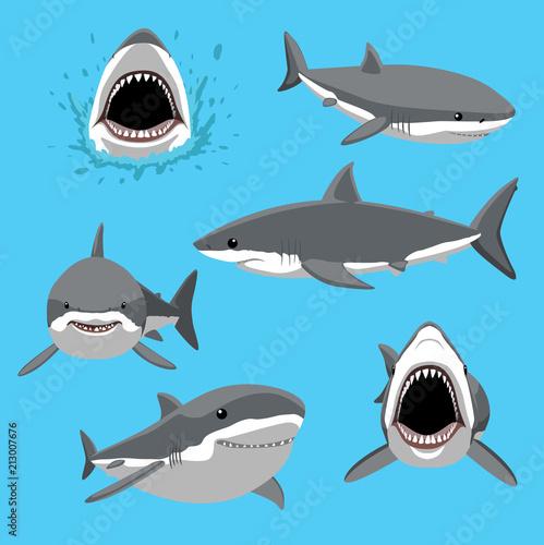 Fototapeta premium Wielki biały rekin sześć pozuje kreskówka wektor ilustracja