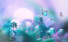 Wild Flowers In Field In Nature In Summer Spring In Sunlight With Beautiful Round Bokeh With A Soft Focus And Toned In Purple Pink And Turquoise Hues Close-up. Floral Background, Copy Space.