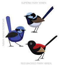 Bird Fairy Wren Set Cartoon Vector Illustration